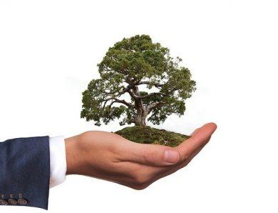Comment protéger son environnement ?