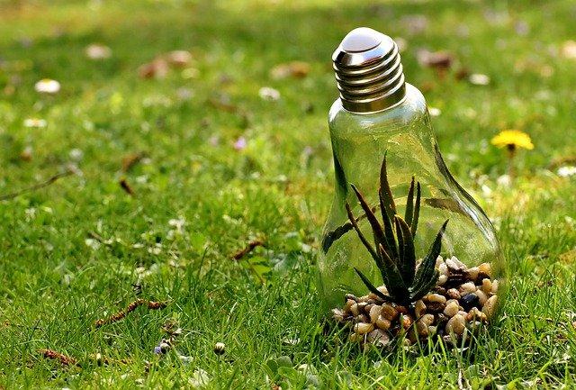 04 bonnes habitudes permettant la sauvegarde de l'environnement
